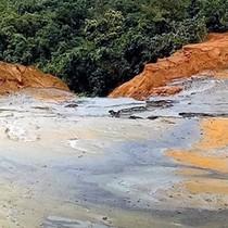 Vỡ đập chứa bùn thải: Cá chết đồng loạt, hàng ngàn hộ dân lo lắng