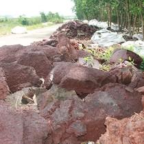 Đổ hàng ngàn mét khối bùn thải ra môi trường