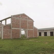 Nhiều chợ nông thôn mới xây dựng tiền tỷ nhưng không ai vào bán mua