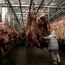 """Châu Á """"sốc"""" với bê bối thịt bẩn Brazil"""