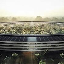 Nhà viết sử của Steve Jobs: Apple không còn là một công ty sáng tạo nữa