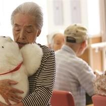 Thị trường đồ chơi thay đổi thế nào khi dân số già hóa?