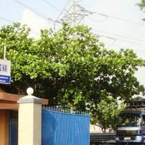 CTCP Nhựa Đồng Nai bị cảnh cáo và phạt 70 triệu đồng