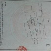 """Không phải đất nền, đây mới là loại nhà ở tăng giá ảo """"khủng"""" ở Sài Gòn"""
