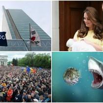 Thế giới 24h: Bắt thêm sếp POSCO E&C, công chúa nhỏ kích cầu kinh tế Anh