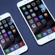 Công nghệ 24h: iPhone 6, 6plus lỗi cảm ứng, Oppo F1 phát nổ