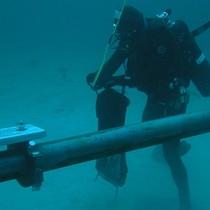 Tuyến cáp biển Liên Á dự kiến sẽ sửa xong trong ngày 25/2
