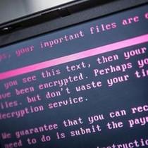 Làm thế nào để tự bảo vệ mình trước mã độc tống tiền mới xuất hiện?