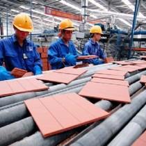Doanh nghiệp vật liệu xây dựng điêu đứng