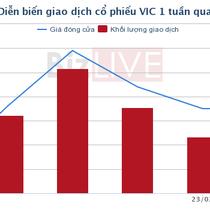 [Cổ phiếu nổi bật tuần] VIC - khởi đầu chu kỳ đầu tư?