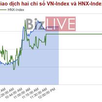 Chứng khoán sáng 4/5: Cổ phiếu ngân hàng vẫn làm trụ, PVD chưa dừng được đà rơi