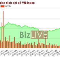 Chứng khoán sáng 10/5: Cổ phiếu ngân hàng tiếp sức cho VN-Index tiến về ngưỡng 730