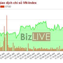 Chứng khoán sáng 16/5: Cổ phiếu của Petrolimex trở về với vùng giá phiên chào sàn