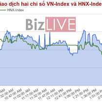 Chứng khoán chiều 23/5: VN-Index đỏ điểm, ngưỡng 740 bắt đầu được test lại