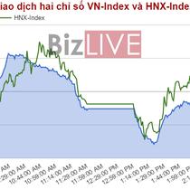 Chứng khoán chiều 30/5: Lượng bán ra tăng vọt, VN-Index mất mốc 740