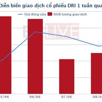 [Cổ phiếu nổi bật tuần] DRI - cổ phiếu cao su tăng 65% sau khi lên sàn