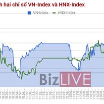 Chứng khoán chiều 23/8: FLC, SSI, HPG, HSG đem lại chút tích cực cho thị trường