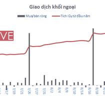 [BizSTOCK] Khối ngoại mua ròng gần 14.300 tỷ đồng 8 tháng