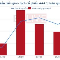 [Cổ phiếu nổi bật tuần] AAA - Lo rủi ro pha loãng hay đặt cược vào tăng trưởng?