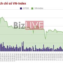 Chứng khoán sáng 2/10: Cổ phiếu BHN độc diễn
