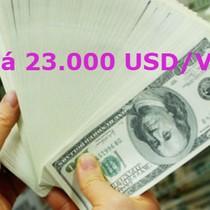 Xu hướng tỷ giá USD/VND sẽ lên mức 23.000 USD/VND?