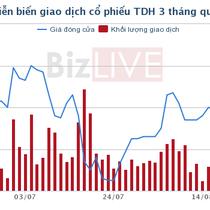 TDH: Lợi nhuận ròng sau soát xét 6 tháng giảm 17 tỷ đồng