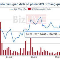 Sông Đà 9 lãi ròng 34 tỷ đồng trong 9 tháng