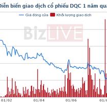 Bóng đèn Điện Quang 9 tháng lãi ròng giảm 51%