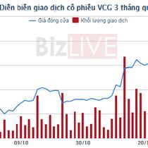 Vinaconex bán vốn hàng loạt tại các công ty con