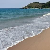 Hơn 1 năm sau sự cố môi trường, biển miền Trung đã an toàn