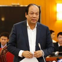 """""""Động cơ ô tô các nước G7 hay iPhone 8 về Việt Nam có cần kiểm tra nữa không?"""""""