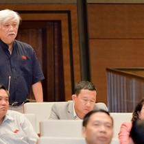 """Ông Dương Trung Quốc: Phải làm rõ thông tin có """"chạy"""" làm đại biểu Quốc hội không?"""