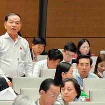 Đại biểu Quốc hội: MobiFone mua AVG có xứng với đồng vốn bỏ ra không?