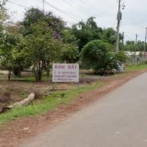 Ngăn chặn đầu cơ, xây dựng nhà đất trái quy định xung quanh sân bay Long Thành
