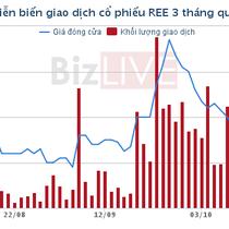 REE: 9 tháng lỗ hơn 384 tỷ đồng từ công ty liên kết