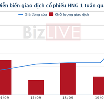 HNG: Cổ đông thông qua phương án phát hành gần 150 triệu cổ phiếu