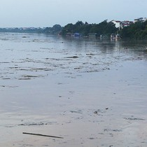 Công nhân đạp rác giải cứu chân cầu Long Biên