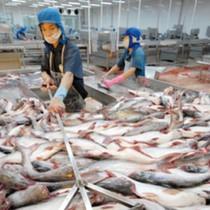 """Bán đất vàng ở Sài Gòn, """"vua cá tra"""" thu về gần 400 tỷ đồng"""