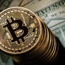 Đồng Bitcoin bất ngờ giảm giá mạnh, chìm sâu dưới mốc 6.500 USD