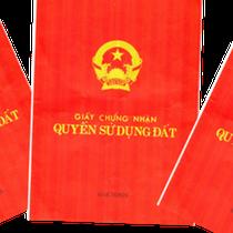 BizDAILY : Bộ Tư pháp đề nghị lùi thời điểm ghi tên cả gia đình lên sổ đỏ