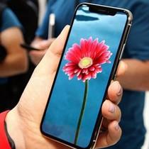 Sản lượng iPhone X giảm khiến doanh thu Samsung sụt giảm