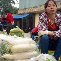 Nông dân phải đổ bỏ su hào, củ cải: Cục trưởng Cục Trồng trọt nói gì?
