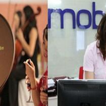 Phó chủ tịch Vafi: Thương vụ MobiFone mua AVG bị nhóm lợi ích xâu xé