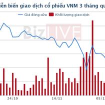 F&N tiếp tục gom thêm gần 22 triệu cổ phần Vinamilk