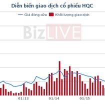 HQC: Công ty của Phó tổng giám đốc đã bán toàn bộ 16,2 triệu cổ phiếu