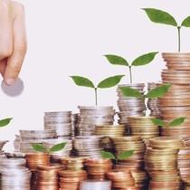 19 doanh nghiệp sẽ thanh toán cổ tức bằng tiền trong tháng 4/2017