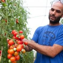"""""""Đầu tư FDI vào nông nghiệp thành công đến 99%"""""""