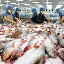 Xuất khẩu nông lâm thuỷ sản đạt 17,1 tỷ USD trong 6 tháng đầu năm
