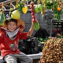 Trung Quốc vẫn là thị trường nhập nhiều nông sản Việt Nam nhất 6 tháng đầu năm 2017