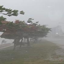 Bắc Bộ có mưa rào vài nơi, Hà Tĩnh - Quảng Bình gió giật cấp 8-9